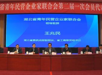 恭贺,程力集团董事长当选湖北省青企联新一届会长